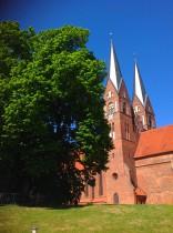 Klosterkirche St. Trinitatis und Wichmannlinde